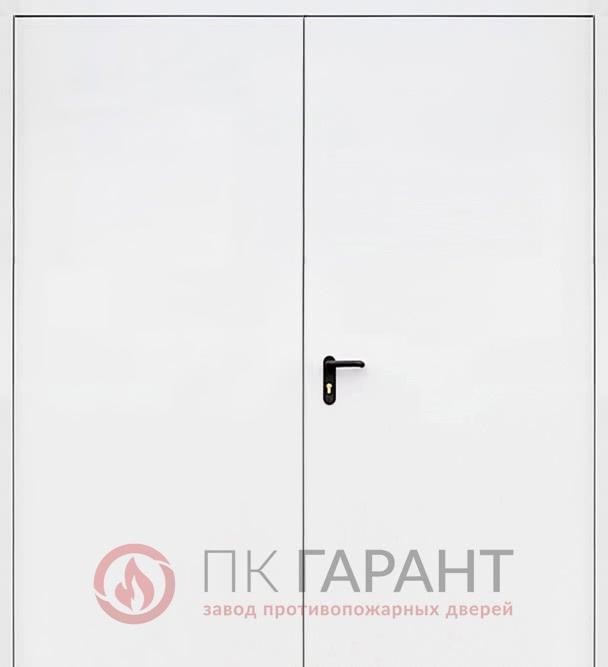 Металлическая входная дверь модели Двупольная глухая ДПМ-02 EI-60 №16 с замком «Fuaro», внутренняя сторона