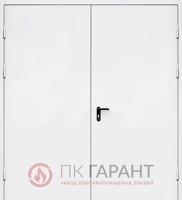 Металлическая входная дверь модели Двупольная сплошная ДПМ-02 №17 EI-60 с замком «Антипаника» (ISEO), наружная сторона