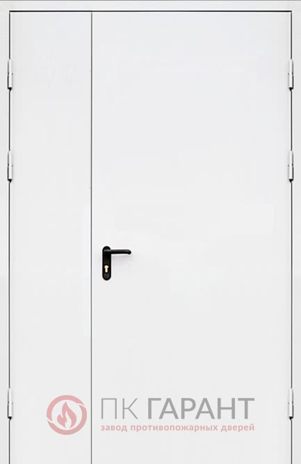 Металлическая входная дверь модели Полуторная ДПМ-02 №9 EI-60 с замком «Антипаника» (Apecs) и ручкой «Пуш бар», наружная сторона
